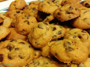 chocolate-chip