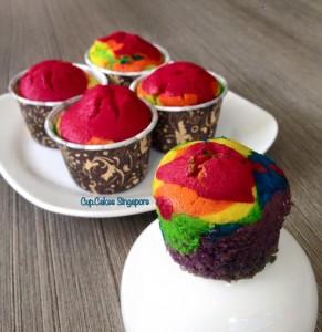 rainbow cucpake2