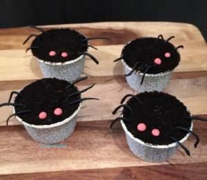 spider-cupcake